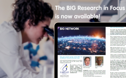 New issue of the BIG Research in Focus available